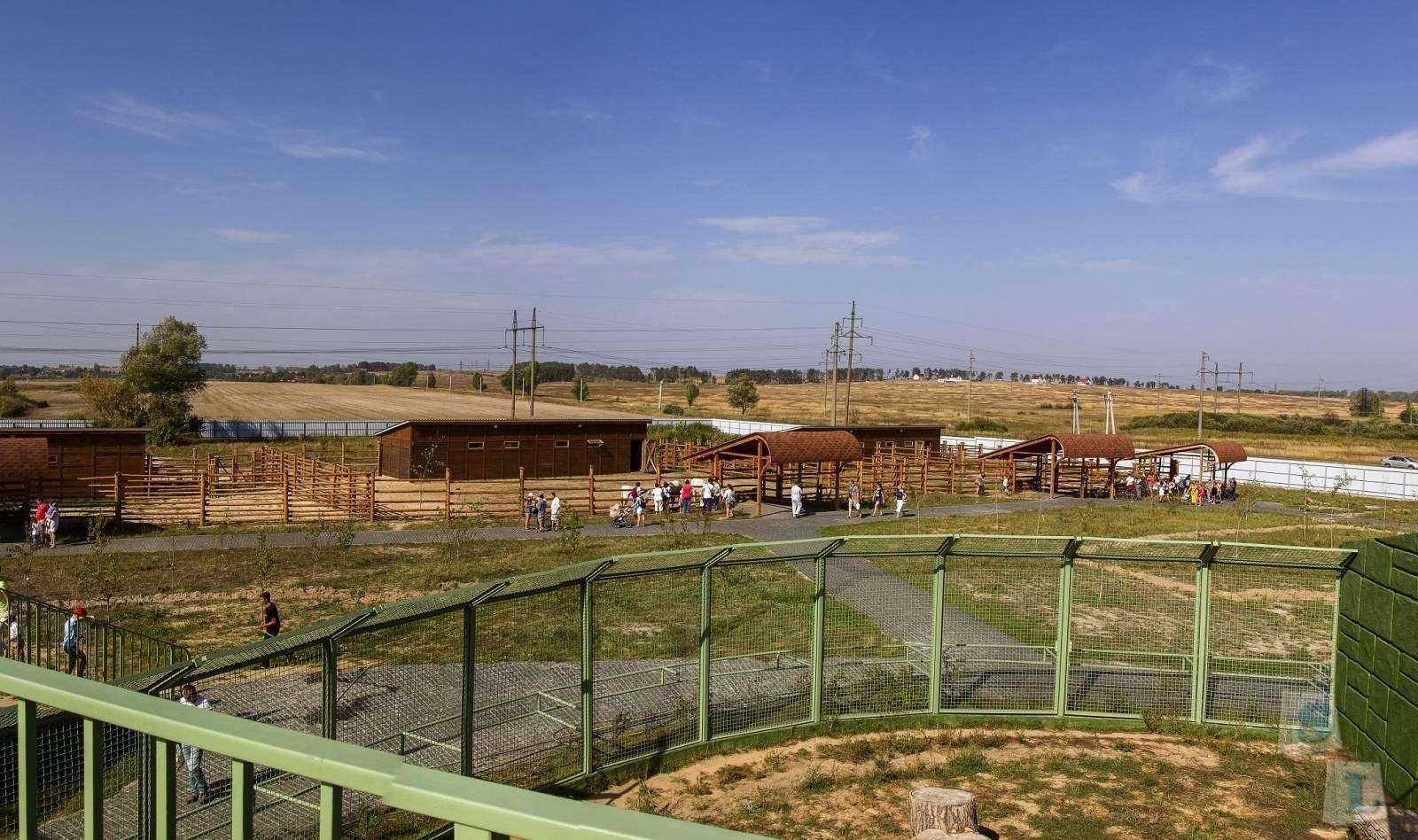 Другие - Украина: Отзыв о посещении зоопарка 12 месяцев
