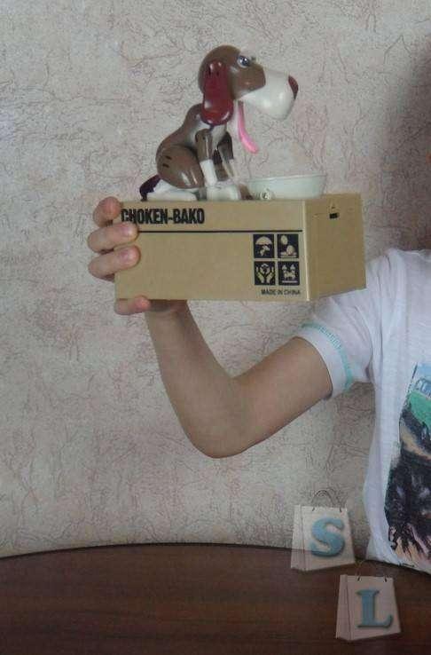 GearBest: Детская копилка 'Собака деньги поедака'