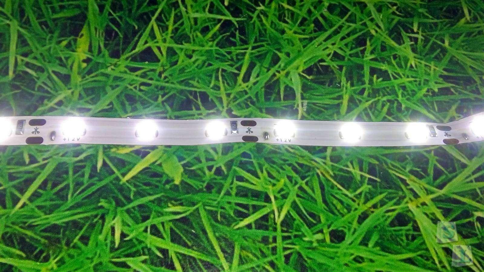Banggood: Обзор 5M White 3528 SMD LED ленты на 300 LED
