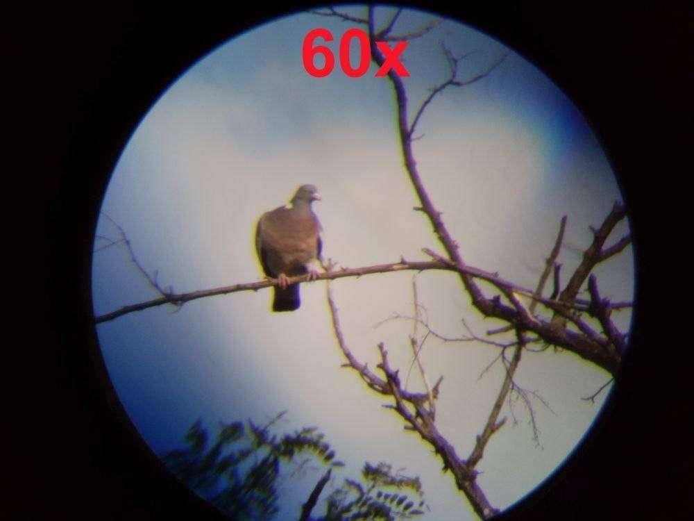 TomTop: Обзор и тесты зрительной трубы VisionKing 20-60x80
