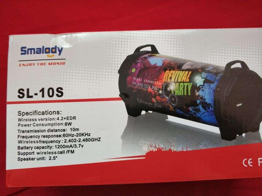 Другие: Smalody SL-10 - большая и громкая колонка для юных