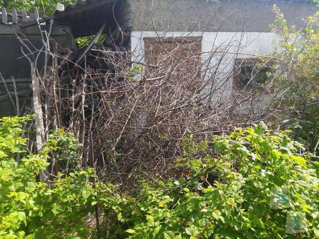 Banggood: Садовый секатор Worth с лезвием из стали SK5