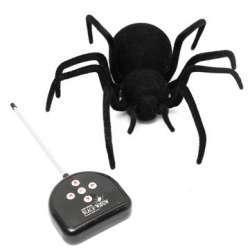Огромный черный волосатый паук на радиоуправлении
