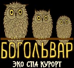 Отдых в Закарпатье, Эко Спа курорт Богольвар
