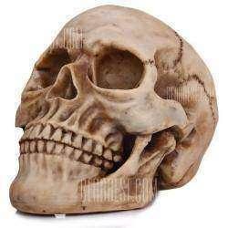 Хеллоуинский череп, что хотел послужить науке, но не смог.