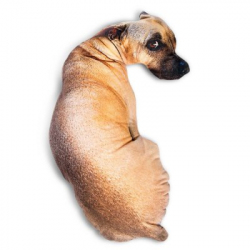 Креативная диванная подушка - собакен :)