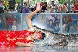 Тайский дневник. Паттайя. Ферма крокодилов, Парк Камня возрастом миллион лет