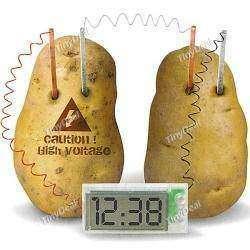 Супер!!!!! Часы работают от обычной картошки